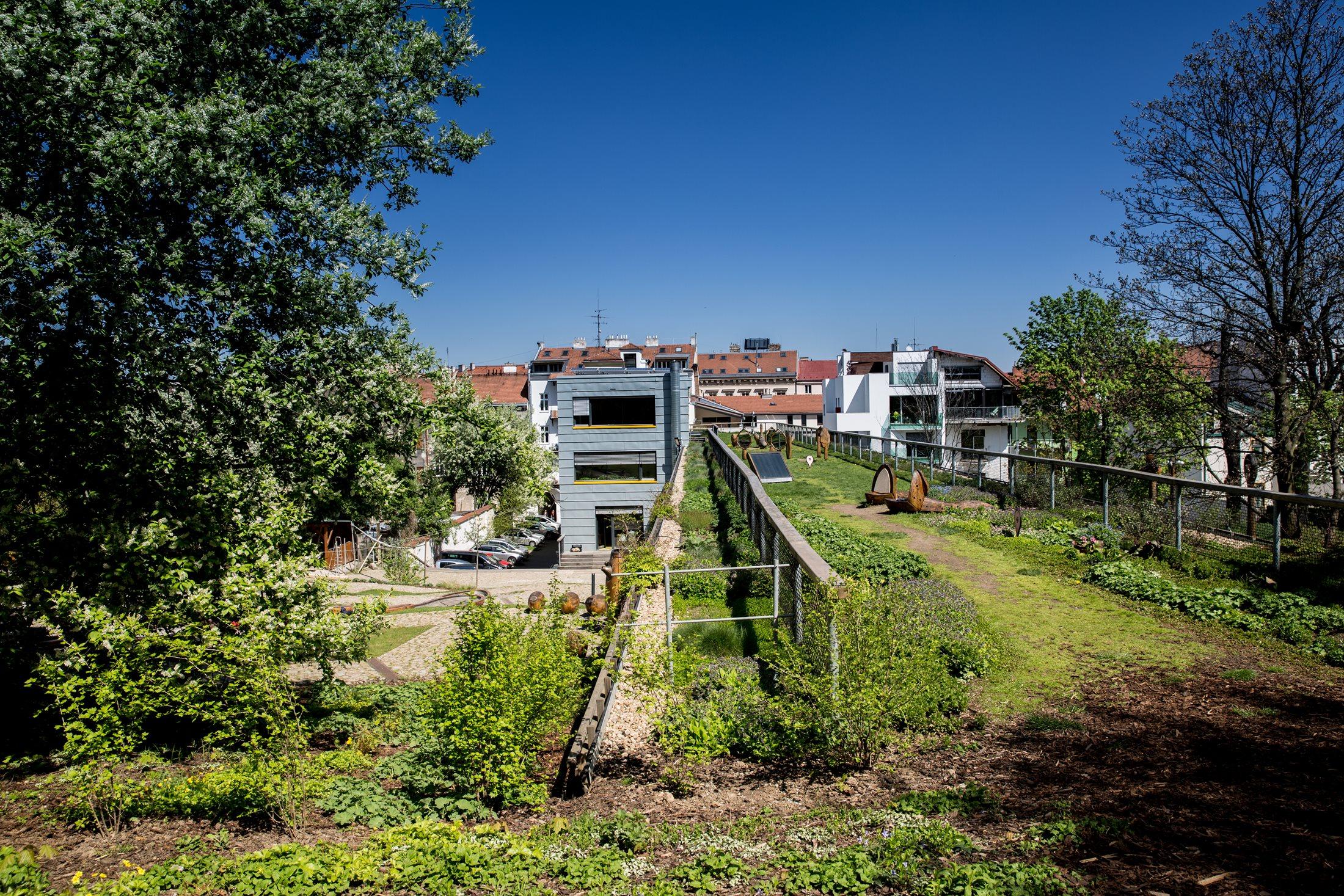 Intenzivní zelená střecha budovy C zapuštěná do svahu směrem ke Špilberku
